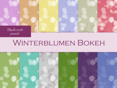 Set Winterblumen